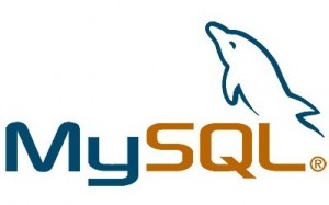 mysql root password