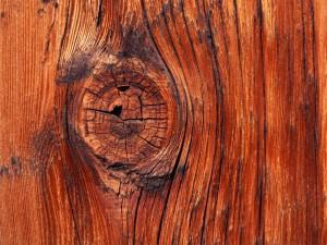 nodo-legno