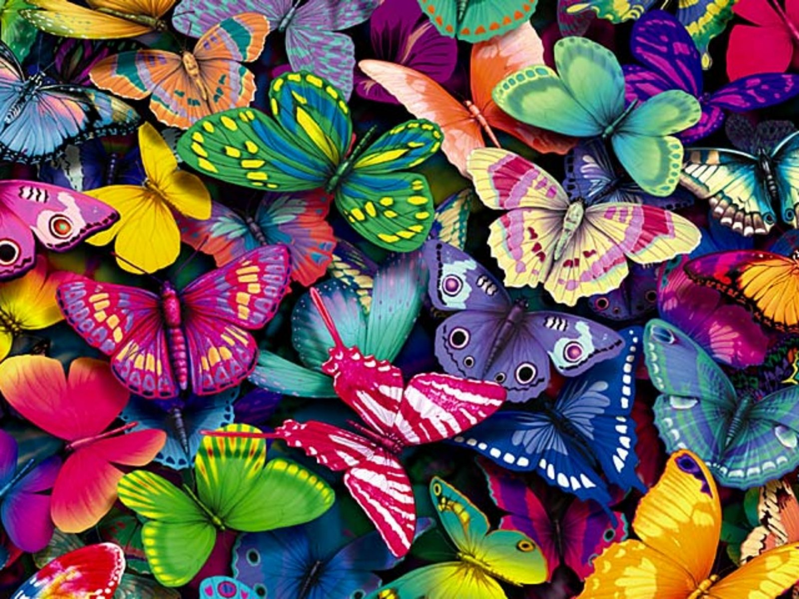 Desktop wallpaper 96 for Immagini farfalle per desktop