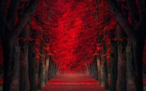 autunno tunnel rosso