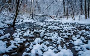 inverno 2015