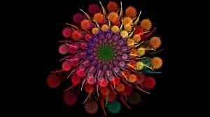 spirale fiori